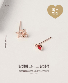 1046746 - <ER1606_IG15> 誕生化 誕生石の耳飾り